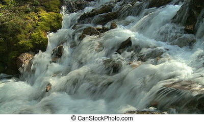 Small mountain stream - Mountain stream with moss