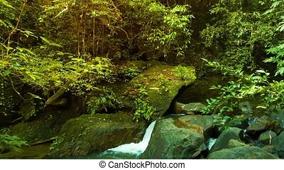 Small Natural Waterfall in Thailand - Video 1080p - Panning ...