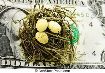 small nest and eggs on a U.S. dollar
