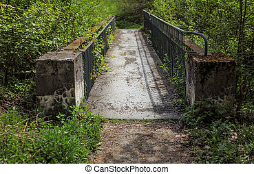 Small old concrete bridge, fence rusted, covered with thick vegetation with green forest around.