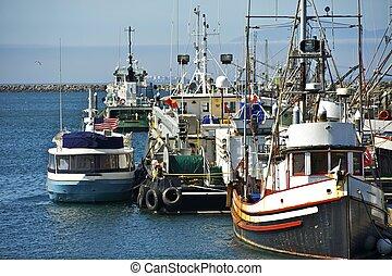 Small Pacific Harbor - Washington State, U.S.A. Small Aged...