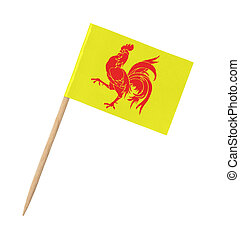Small paper flag of Wallonia on wooden stick, isolated on ...