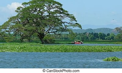 Small Passenger Boat in the Shallows of Tissa Lake - Small,...