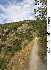 small path on the side of a mountain