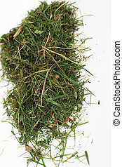 Small pile of green grass