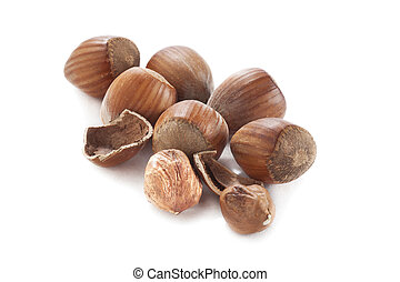 small pile of hazel nuts