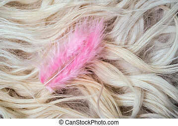Small pink feather