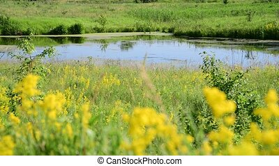 small plain lake In central part of Russia - a small plain...