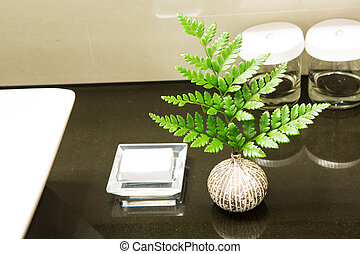 Small plant in bathroom