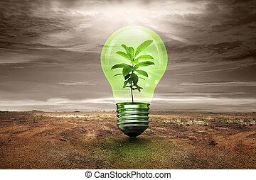 Small plant inside light bulb in cracked land