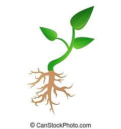 Small plant soybean icon, cartoon style