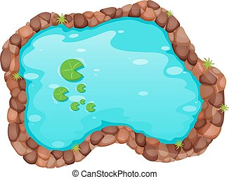 Small pond - Top view of small pond with water lily