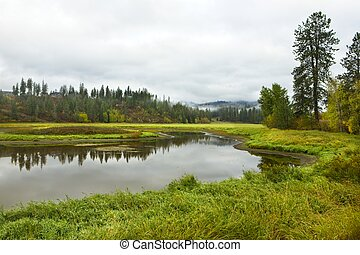 Small pond surrounded by grass near Hauser, Idaho.