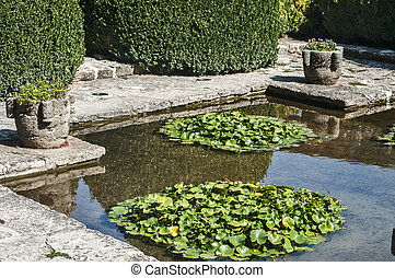 Small pond in park garden