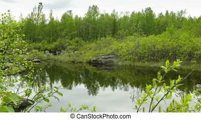 Small pond in the north forest