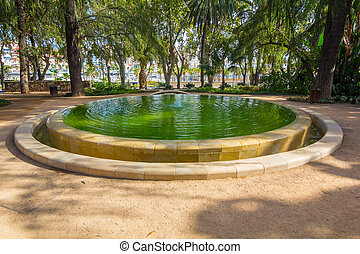 small pond in the park of Malaga, Spain