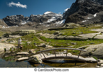 Small pond near Duesseldorfer Huette in the Ortler Alps (...