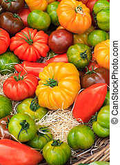 Small pumpkins at the market