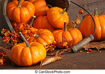 Small pumpkins with wood bucket - Small pumpkins with bucket...