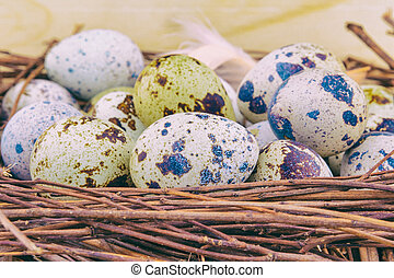 Small quail eggs in wooden nest