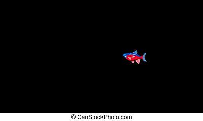 Small Red-blue striped Aquarium Fish Alpha Matte - Small...