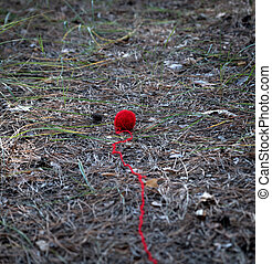 small red wool ball unwound in the middle of the forest
