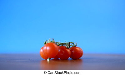 small ripe red cherry tomatoes on a branchl on a blue...