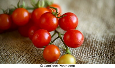 small ripe red cherry tomatoes on a branchl on a table