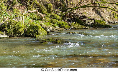 small river at spring time