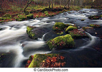 Small river cascade in autumn forest
