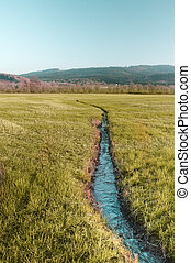 Small River in hay field