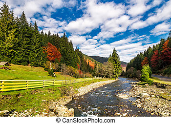 small river in spruce forested mountains with some trees in...