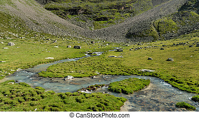 Small river in the Ortler alps on a sunny day in summer - ...