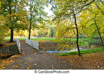 Small river in the park. Autumn mood.