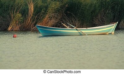 Small rowing boat anchored between the reeds at Mogan Lake...