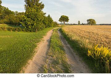 small rural road