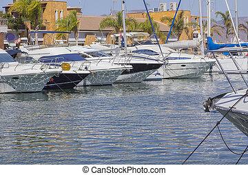 small sailboats moored in a marina