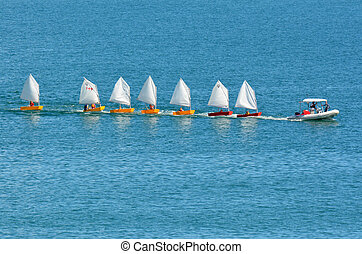 DOUBTLESS BAY, NZ - FEB 15:Motor boat with sailing instructor drags a line of small sailing boats on Feb 15 2014.New Zealand is one of the top sailing nation in the world.