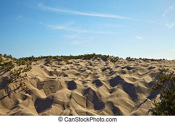 Small sand dunes on beach.