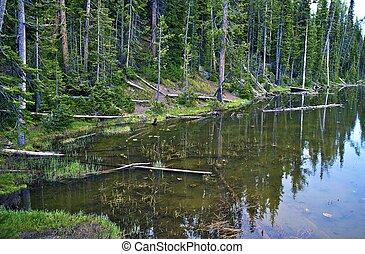 Small Scenic Lake
