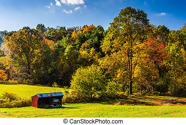 Small shed and autumn trees, in rural York County,...