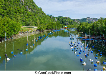small shrimp farm and fishing village in Khao Sam Roi Yot