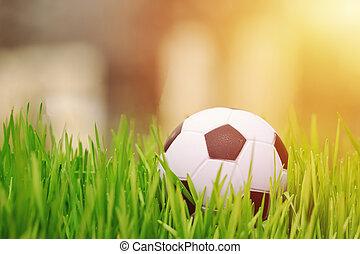 Small soccer ball in grass