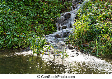 small source of spring water in the park