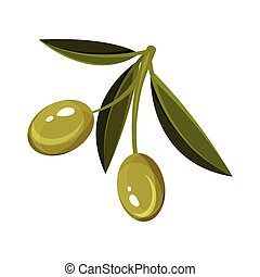 Small sprig with green leaves and two ripe olives. Organic food. Natural product. Flat vector design