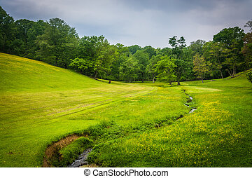 Small stream and farm field in rural Baltimore County, Maryland.