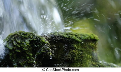 Small stream flows on moss stones close up