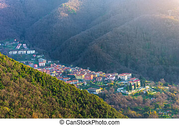 Small town in a mountain valley among the forest.