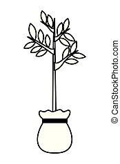small tree growing from grow bag black and white