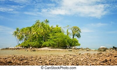 Small Tropical Island at Low Tide